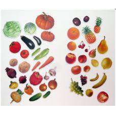 Наш урожай (Магнитное учебное пособие)